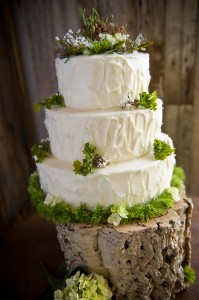 Vegan Wedding Cake Massachusetts