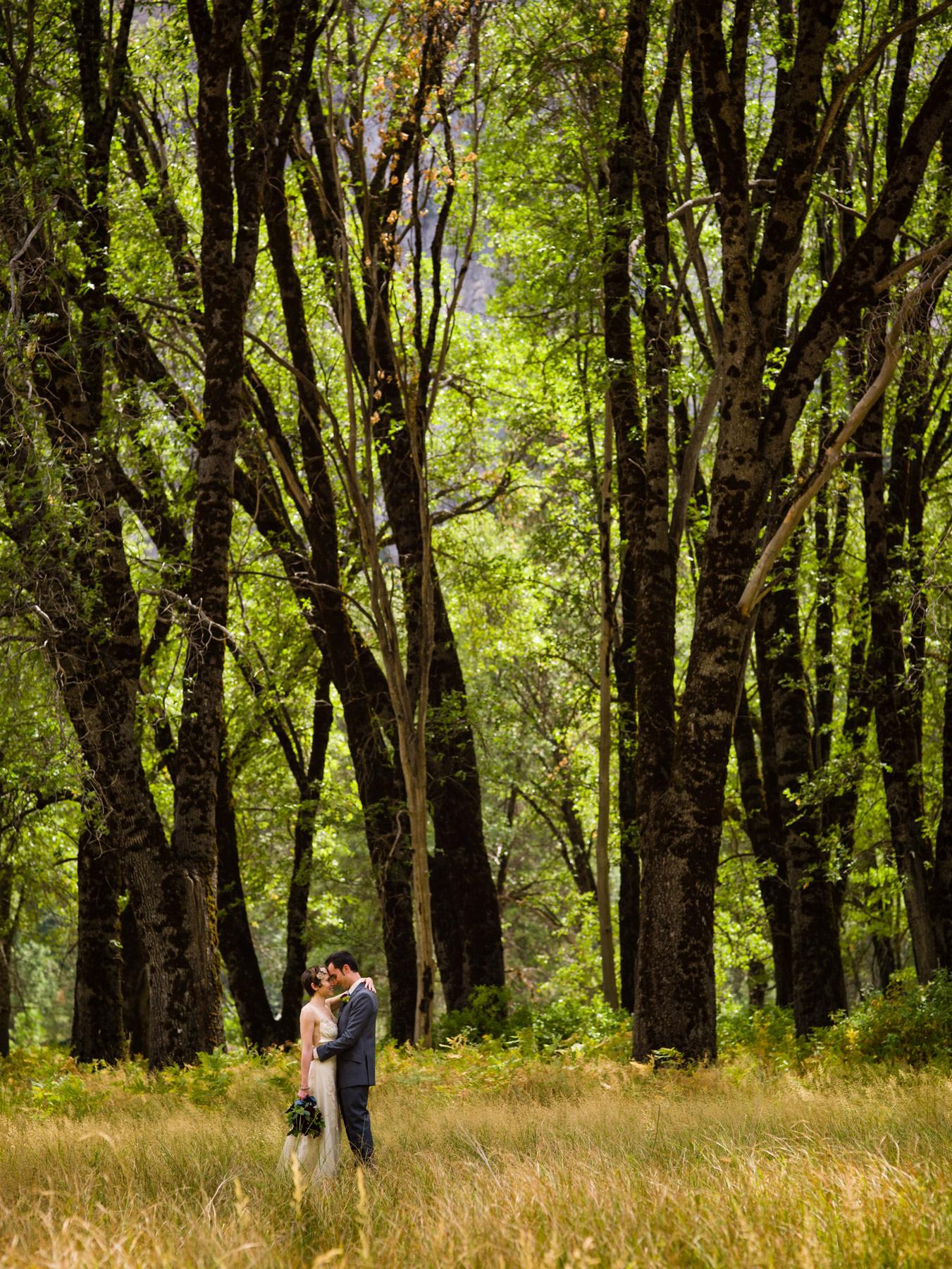 Addyrose Design North Fork Ca Rustic Wedding Guide