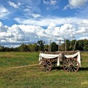 Cactus Creek Barn - Pioneer Wagon Decorated