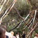 serenity-canpy-wedding