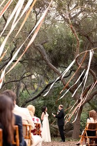 Serenity Horse Stables Plant City Fl Rustic Wedding Guide