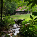 wedding-venue-outdoor-pigeon-forge